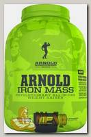Iron Mass Arnold Series