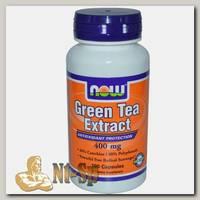 Green Tea Extract 400 mg