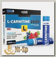 L-Carnitine 2500 mg