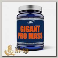 Gigant Pro Mass