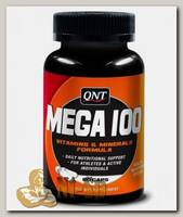 Mega 100