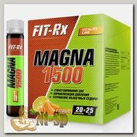 Magna 1500