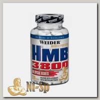 HMB 3800
