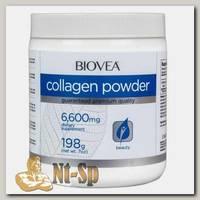 Collagen powder 6600 мг