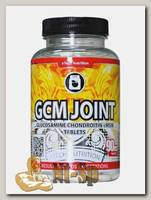 GCM Joint Tablets
